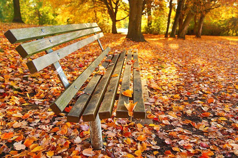 autunno chiusura