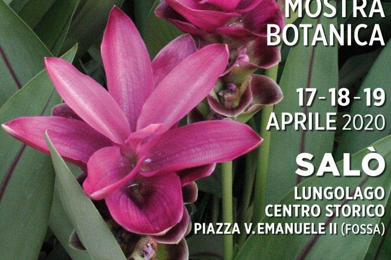mostra botanica Salò 2020